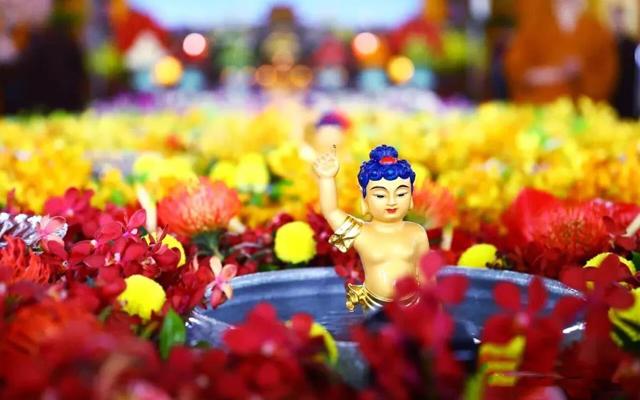 金光寺-浴佛节|恭迎释迦牟尼佛圣诞日